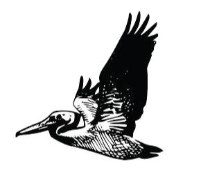 ValeROBI